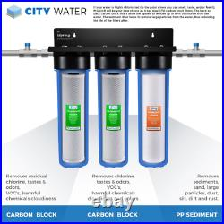 3-Stage 20 In. 3-Piece Big Blue Whole House Filter Pack